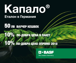 BASF 3