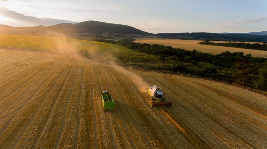 Успешното земеделие на България - 17