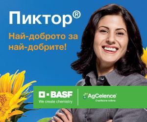 BASF Pictor